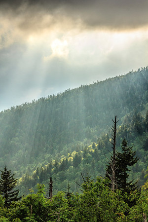 Natural Landscape from Clingmans Dome
