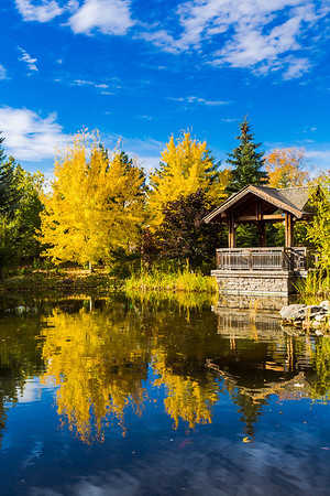 Rich Fall Colors