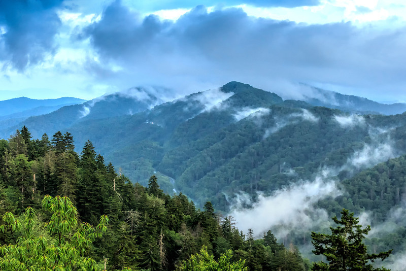 Natural Landscape of the Great Smoky Mountains