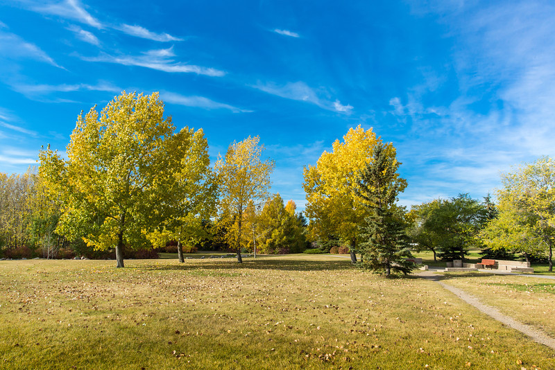 Fall Colors in the Park