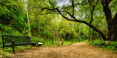 Bench along a Path