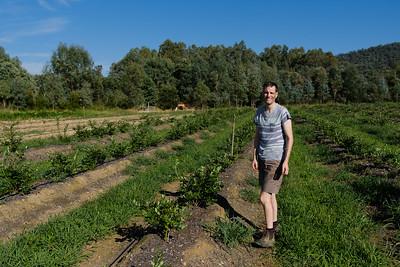 Farm Worker Standing in a Field
