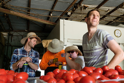 Farm Workers on a Break in a Shed