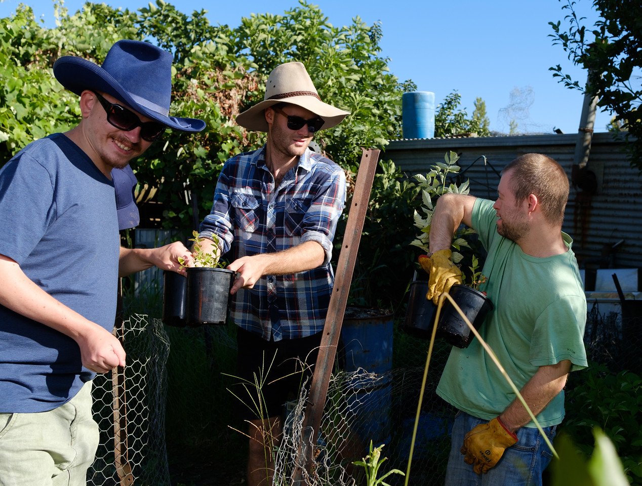Men Working on Farm with their Support Worker
