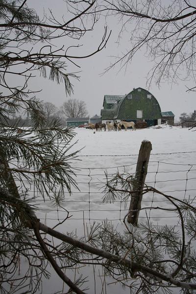 ON-2008-025: Wiarton, Bruce County, ON, Canada