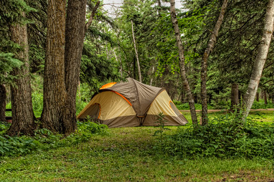 Tent in Camp Site
