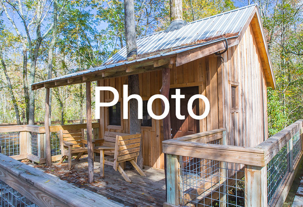 Bertie County treehouses and nature walk