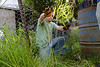 Gardener Weeding a Garden Bed