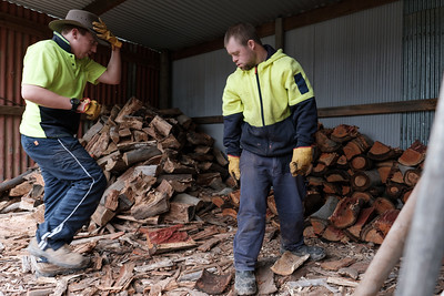 Men stacking Wood on a Farm Shed