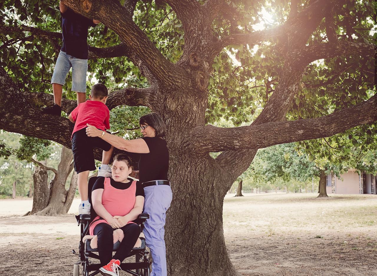 Boys using a Wheelchair to help Climb Tree