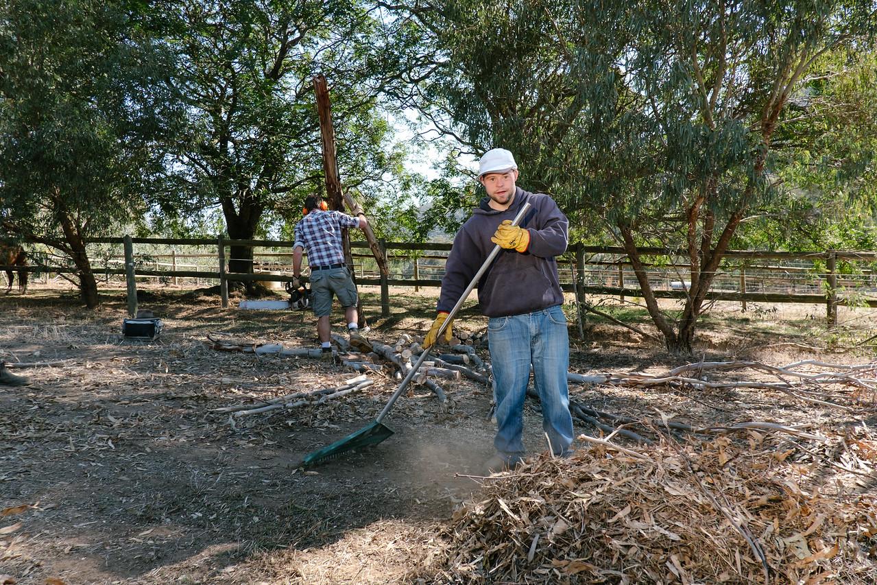 Men Working in a Farm Paddock