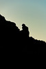 20101116_CamelbackMountain_PrayingMonkSeries-23
