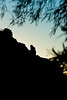 20101116_CamelbackMountain_PrayingMonkSeries-31