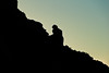 20101116_CamelbackMountain_PrayingMonkSeries-22