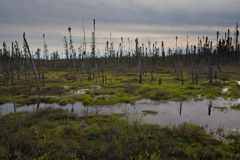 QC-2008-052: Waskaganish Junction, Eeyou Istchee James Bay Territory, QC, Canada