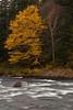 QC-2009-050: Parc de la Jacques-Cartier, MRC de la Jacques-Cartier, QC, Canada