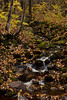 QC-2009-055: Parc de la Jacques-Cartier, MRC de la Jacques-Cartier, QC, Canada