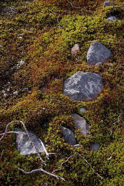 QC-2008-056: Waskaganish Road, Eeyou Istchee James Bay Territory, QC, Canada