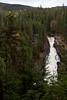 QC-2009-033: Forêt Montmorency, MRC de la Côte-de-Beaupré, QC, Canada