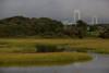 RI-2009-047: Jamestown, Newport County, RI, USA