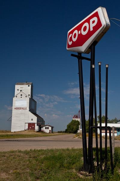 SK-2010-037: Hodgeville, Lawtonia 135, SK, Canada