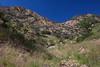 SON-2012-083: Sierra Purica, Mpo. Bacoachi, Sonora, Mexico