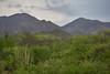 SON-2012-075: Mazocahuí, Mpo. Baviácora, Sonora, Mexico