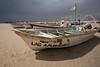 SON-2008-043: El Golfo del Santa Clara, Mpo. San Luis Rio Colorado, Sonora, Mexico
