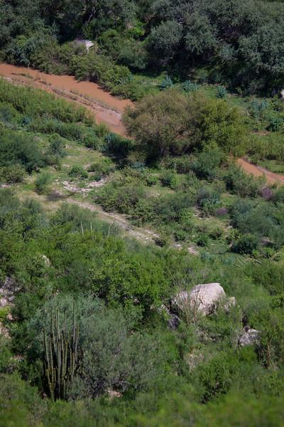 SON-2012-109: Rio Sonora, Mpo. Ures, Sonora, Mexico