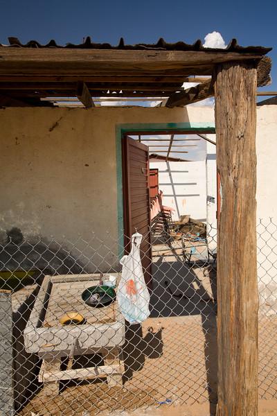 SON-2007-024: Sahuaro, Mpo. Caborca, Sonora, Mexico