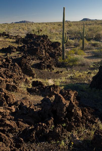 SON-2008-030: El Pinacate, Mpo. Puerto Peñasco, Sonora, Mexico