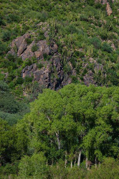 SON-2012-090: , Mpo. Arizpe, Sonora, Mexico