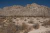 SON-2007-045: Desierto de Altar, Mpo. San Luis Rio Colorado, Sonora, Mexico