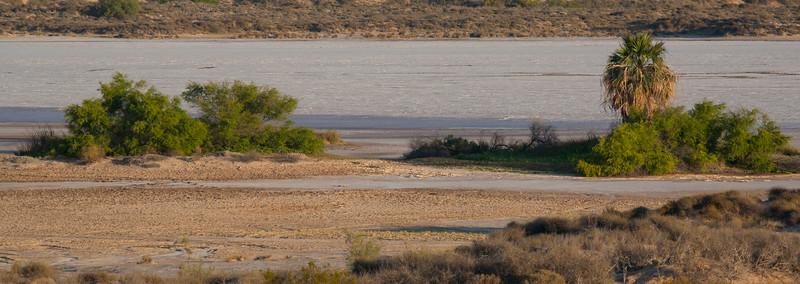 SON-2009-004: Bahia Adair, Mpo. Puerto Peñasco, Sonora, Mexico