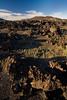 SON-2008-031: El Pinacate, Mpo. Puerto Peñasco, Sonora, Mexico