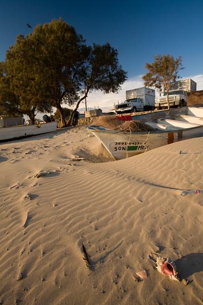 SON-2007-032: El Desemboque, Mpo. Caborca, Sonora, Mexico