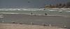 SON-2008-045: El Golfo del Santa Clara, Mpo. San Luis Rio Colorado, Sonora, Mexico