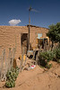 SON-2007-023: Sahuaro, Mpo. Caborca, Sonora, Mexico