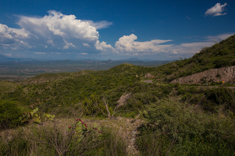 SON-2012-089: Sierra Cebadehuachi, Mpo. Bacoachi, Sonora, Mexico