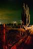SON-2007-033: , Mpo. Caborca, Sonora, Mexico