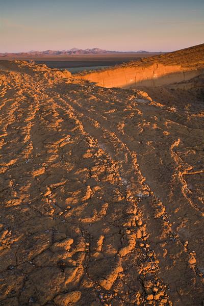 SON-2008-037: El Pinacate, Mpo. Puerto Peñasco, Sonora, Mexico