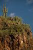 SON-2007-005: Magdalena de Kino, Mpo. Magdalena, Sonora, Mexico
