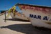 SON-2012-116: Bahia Kino, Mpo. Hermosillo, Sonora, Mexico