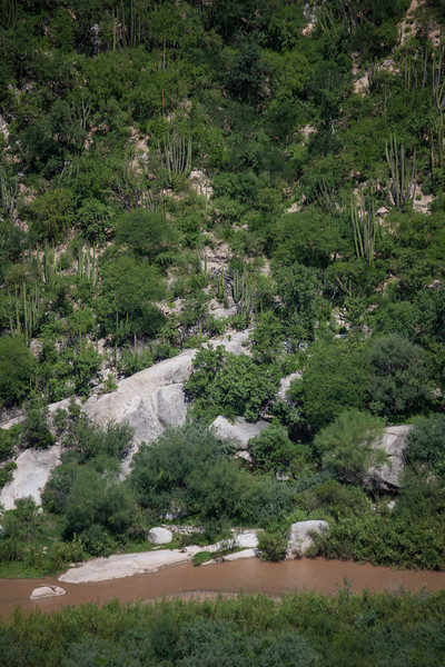 SON-2012-111: Rio Sonora, Mpo. Ures, Sonora, Mexico