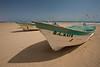 SON-2008-042: El Golfo del Santa Clara, Mpo. San Luis Rio Colorado, Sonora, Mexico