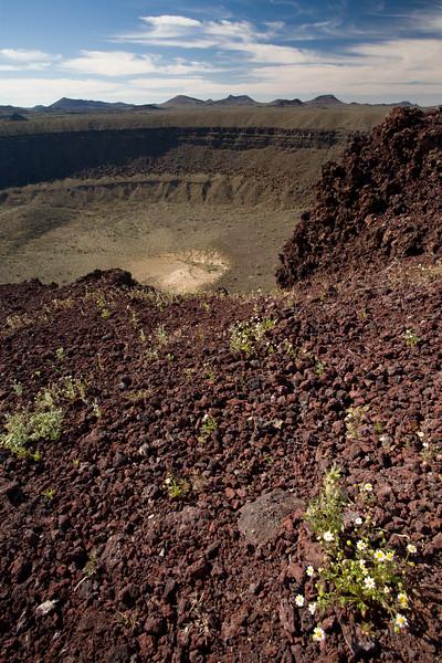SON-2008-006: El Pinacate, Mpo. Puerto Peñasco, Sonora, Mexico