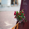 Flowers on the monument to the Barcelona siege at the end of the Spanish Sucession War (1713-14), when Catalonia lost its traditional rights and liberties. Town of Barcelona, autonomous commnunity of Catalonia, northeastern Spain