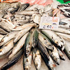 Mackerels, Boqueria market, town of Barcelona, autonomous commnunity of Catalonia, northeastern Spain