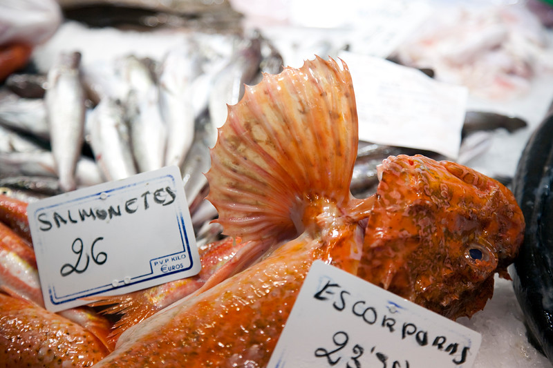 Scorpion and other kinds of fish, Boqueria market, town of Barcelona, autonomous commnunity of Catalonia, northeastern Spain