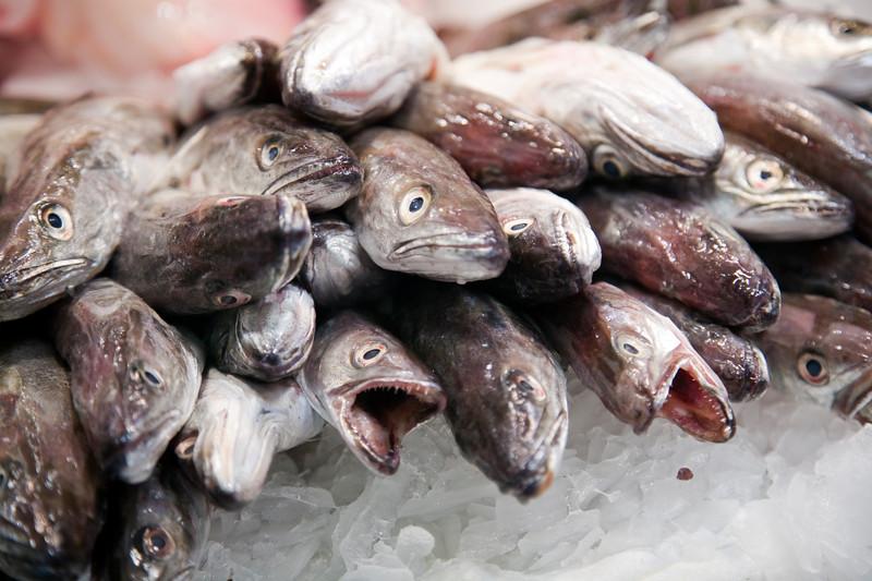 Pescadillas, Mecado de la Boquería, Barcelona